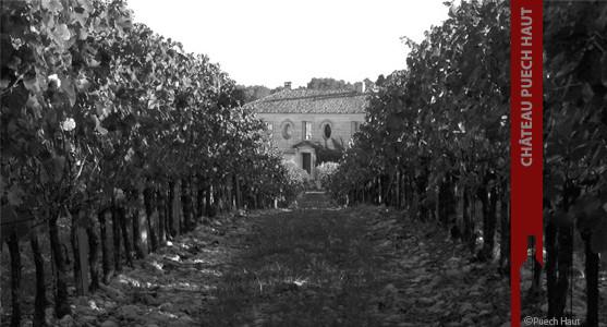 1907: Château Puech Haut - Grand Vin Languedoc - Acheter les Vins du Château Puech Haut