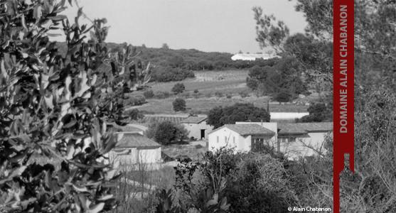 1907: Domaine Alain Chabanon - Languedoc - Montpeyroux - Acheter les vins du Domaine Alain Chabanon