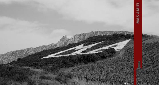 1907: Mas Amiel - Maury - Acheter les Vins du Mas Amiel
