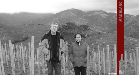 1907: Mas Blanc - Roussillon - Acheter les Vins du Mas Blanc