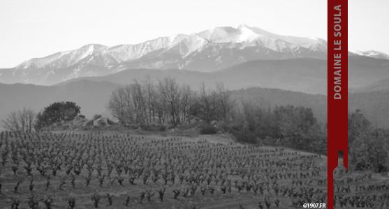 1907: Domaine le Soula - Roussillon - Acheter les Vins du Domaine du Soula